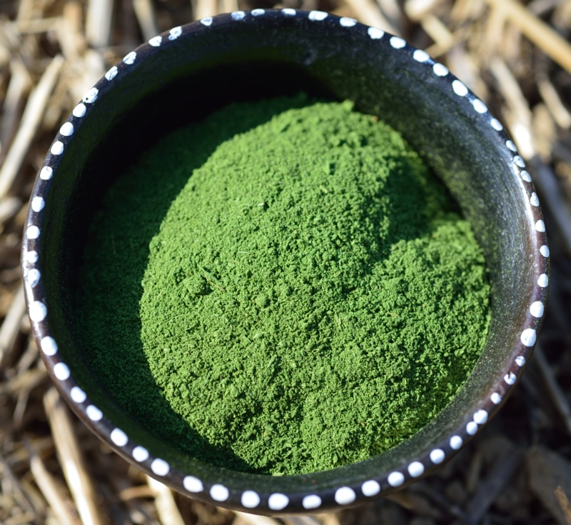 moringa powder in a pot